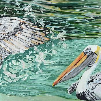 Pelican Flies by Pamela Trueblood