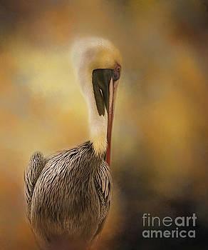 Pelican in the Mist by Kelley Freel-Ebner