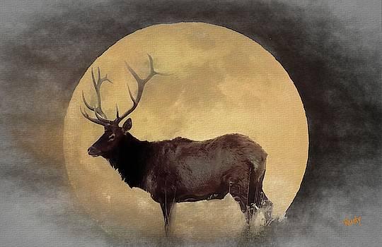Pennsylvania Bull elk and a full moon. by Rusty R Smith