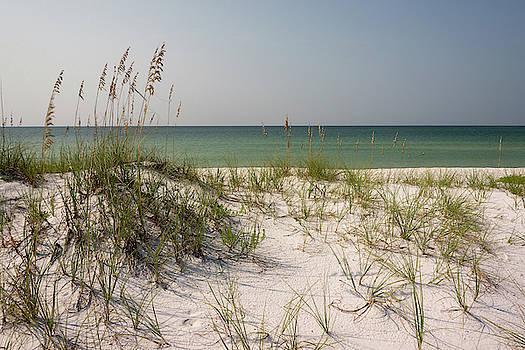 Brian Harig - Pensacola Beach 3 - Pensacola Florida