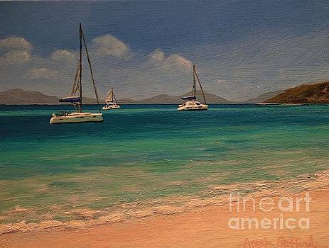 Peter Island View by Angela Stafford