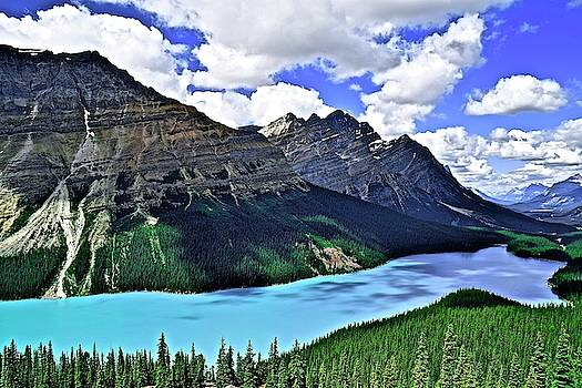 Frozen in Time Fine Art Photography - Peyto in Banff National Park