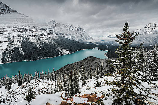 Peyto Lake in Banff National Park, Canada by Kamran Ali
