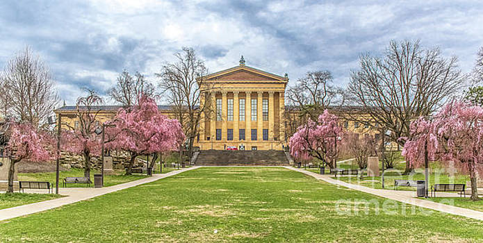 Philadelphia Art Museum Cherry Blossom 0404D by Howard Roberts