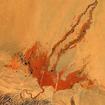Phoenix in Taklamakan Desert by Planet Impression