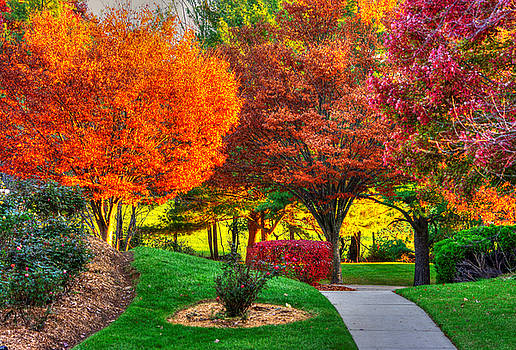 Pick A Color - Autumn Colorfest No. 1 - Mount Airy, Carroll County Maryland by Michael Mazaika