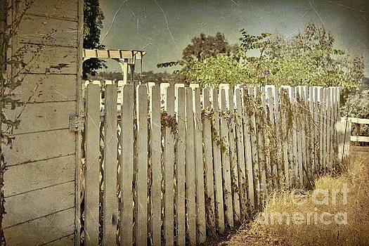 Picket Fence by Stacey Brooks