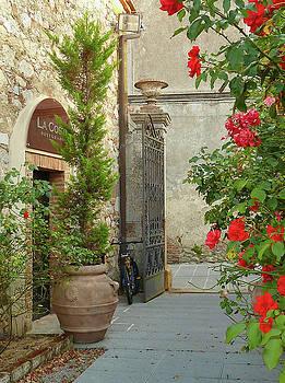 Picturesque Montefollonico Alley by Norma Brandsberg