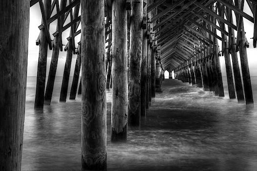 Pier Pilings In Black And White by Carol Montoya