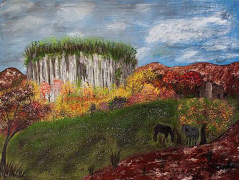 Pilot Mountain by Randy Sylvia