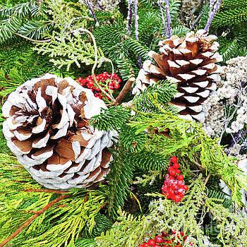 Sharon Williams Eng - Pine Cone Christmas