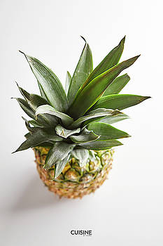 Pineapple top by Cuisine at Home