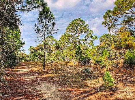Pines Line Trail by Scott Gunnerson
