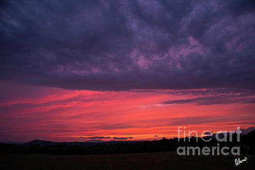 Pink and Purple Sky by Alana Ranney