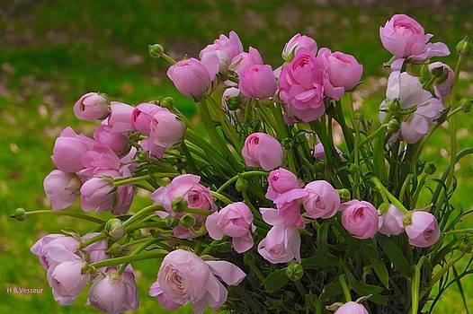 Pink Beauties by B Vesseur