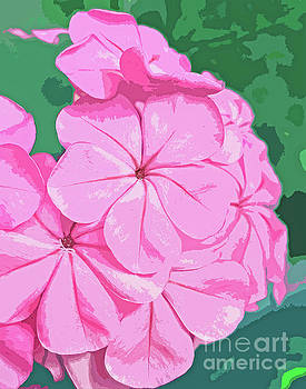 Pink Blossom Abstract 300 by Sharon Williams Eng