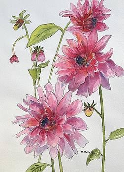 Pink Dahlias by Marita McVeigh