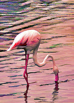 Pink Flamingo Two by Rosalie Scanlon