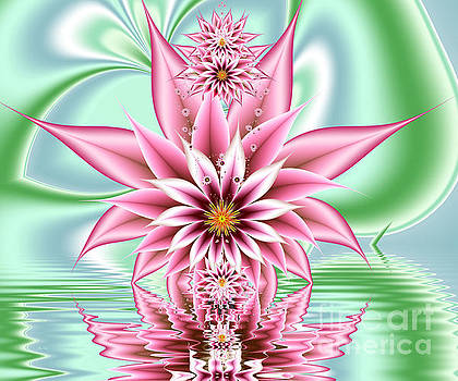 Pink Flower Above Water by Galina Lavrova