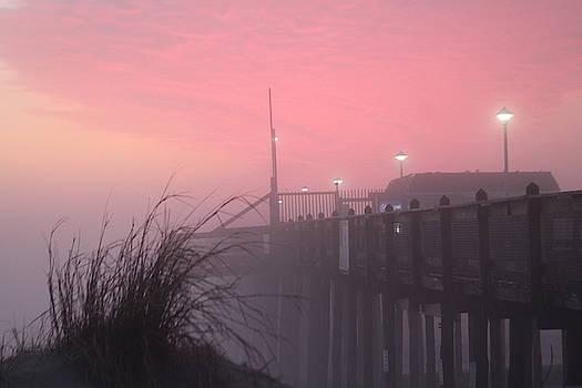 Pink Fog At Dawn by Robert Banach