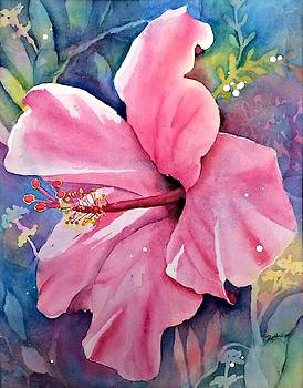 Pink Hibiscus by Beth Fontenot
