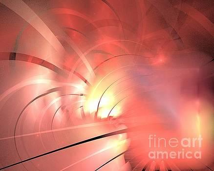 Pink Ray Blossom by Kim Sy Ok