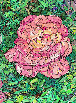 Pink Rose by James W Johnson
