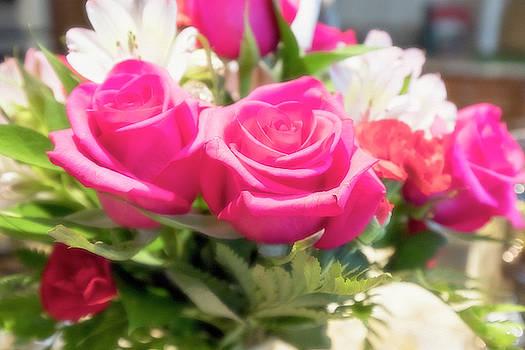 Pink Roses by David Stasiak