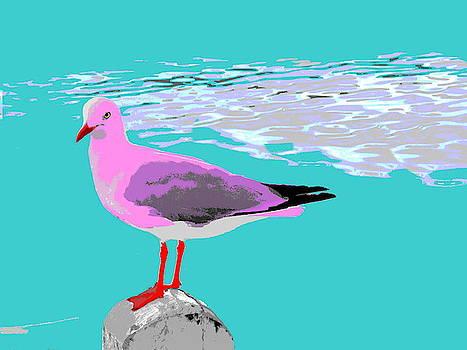 Pink Seagull - Pop Art by Lexa Harpell
