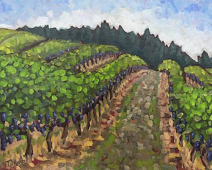 Pinot Paradise by Tara D Kemp