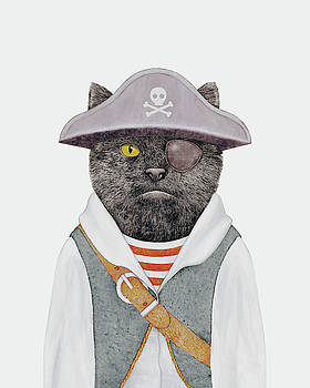 Pirate Cat by Animal Crew
