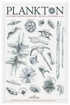 Plankton Poster by Kirsten Carlson