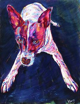 Playful dog by Karin McCombe Jones