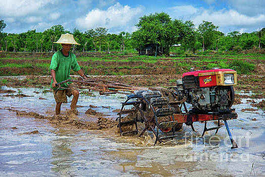 Plowing with a Hand Tractor by Lee Craker