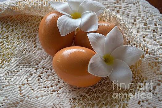 Plumeria Easter by Inessa Williams
