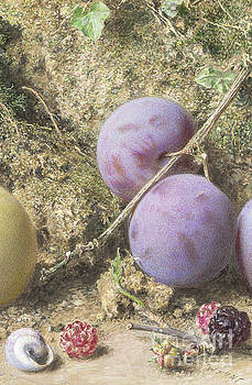 William Henry Hunt - Plums and Mulberries Detail