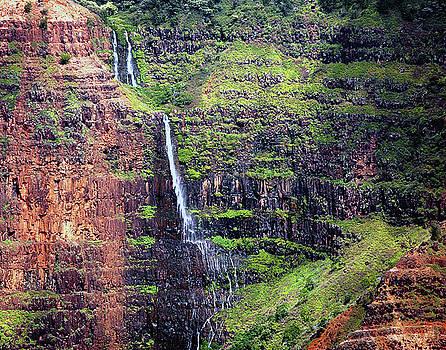 Susan Burger - Plunging Falls