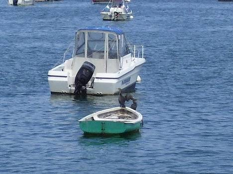 Plymouth Harbor  4 by Ronni Dewey