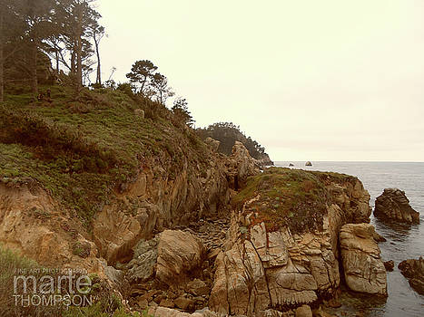 Point Lobos Afternoon by Marte Thompson