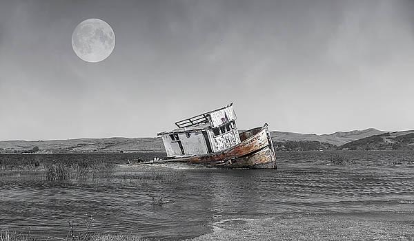 Point Reyes California Shipwreck by Betsy Knapp
