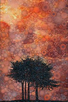 Point Reyes by Daniel McPheeters