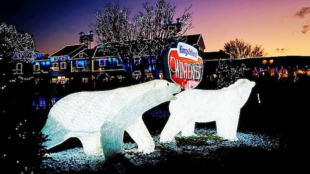 Polar Ice by Barkley Simpson