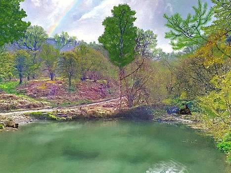 Pond After A Late Spring Rain by Sandi OReilly