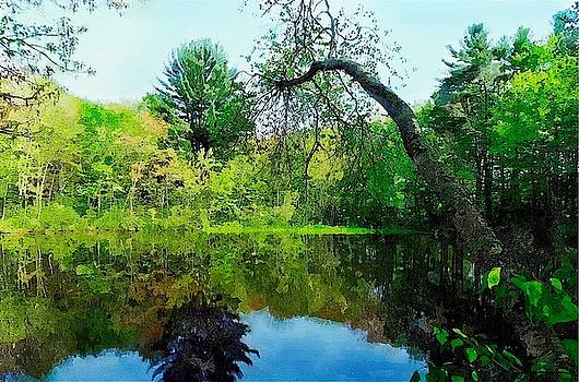 Pond by Bakke and Schweizer Paintings