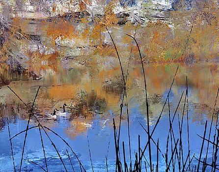 Pond Reflections by Jeanne Gadol