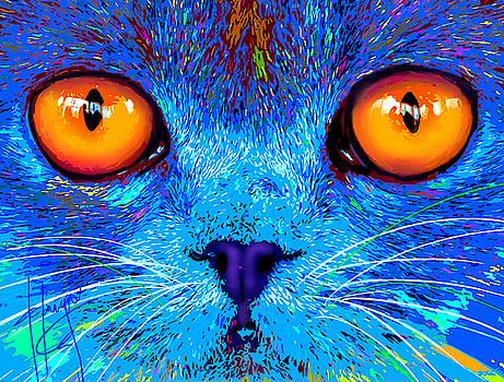 pOpCat Boe - Big Orange Eyes by DC Langer