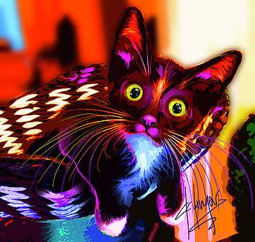 pOpCat Maverick The Kitten by DC Langer