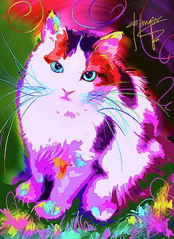 pOpCat Rainbow by DC Langer