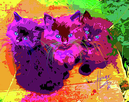 pOpCats The Three MusCATteers by DC Langer