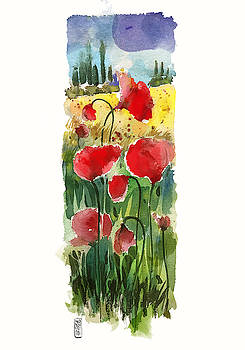Poppies by Alessandro Andreuccetti
